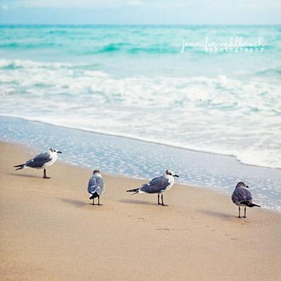 Florida Fine Art Photography Prints - Jennifer Vahlbruch