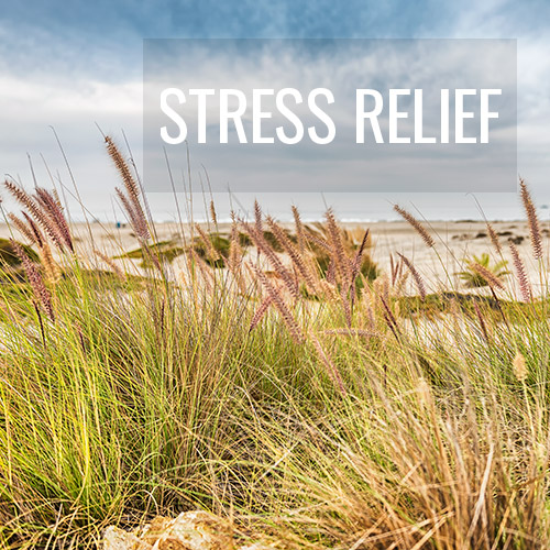 Stress relief Fine Art Photography Prints - Jennifer Vahlbruch