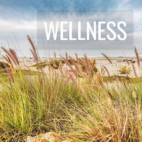 Wellness Fine Art Photography Prints - Jennifer Vahlbruch