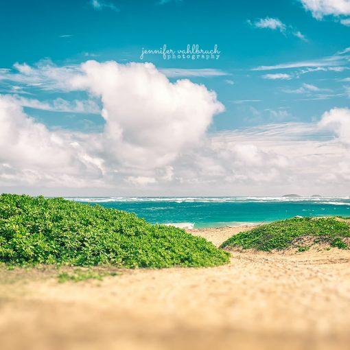 Green Beach - Jennifer Vahlbruch