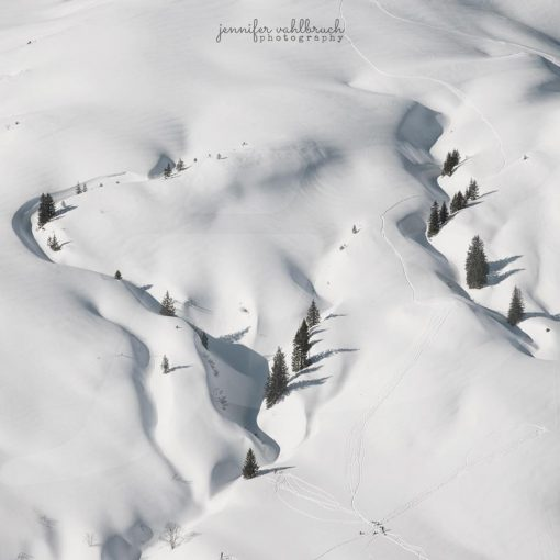 Winter Trails - Jennifer Vahlbruch