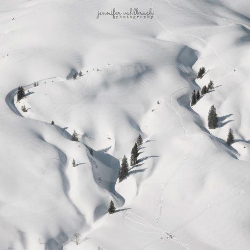 Winter Trails - Jennifer Vahlbruch